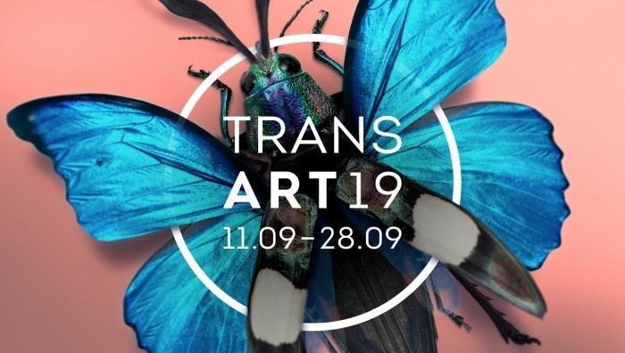 028084-transart19
